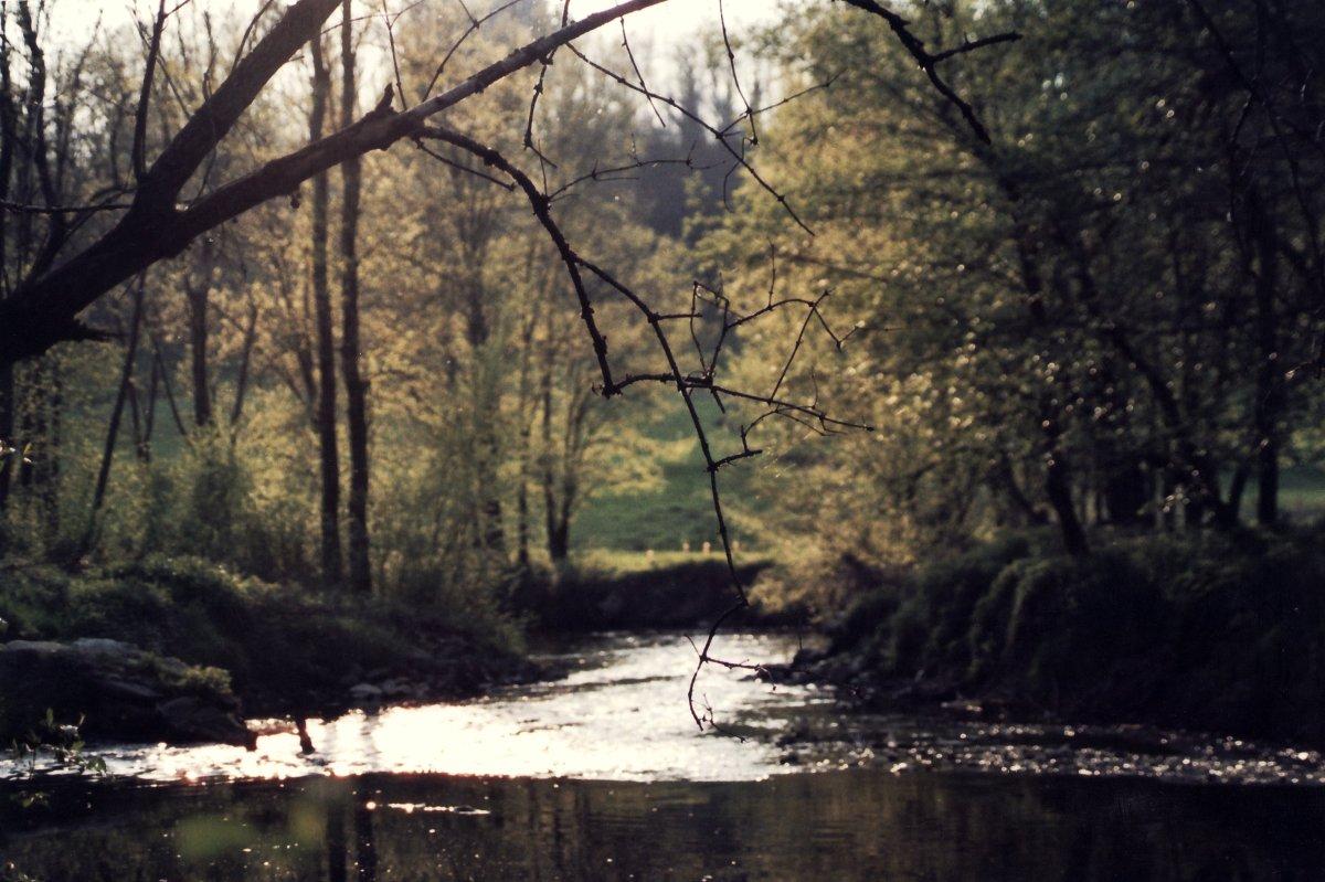 Ambiente in Brianza: un bilancio possibile